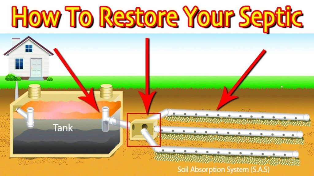Restoring A Septic Drain Field: First Steps (Least Vs. Most Expensive)